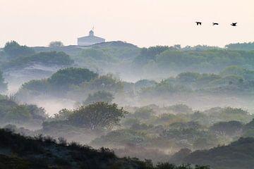 Aalscholvers boven duinen met mist met de watertoren van Katwijk van Menno van Duijn