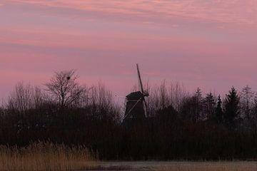 de molen van Vorden van Tania Perneel