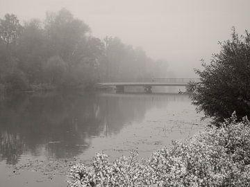 Foggy Morning van Lena Weisbek