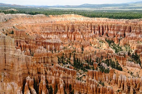 Bryce Canyon - Utah (VS) van Edwin van Amstel