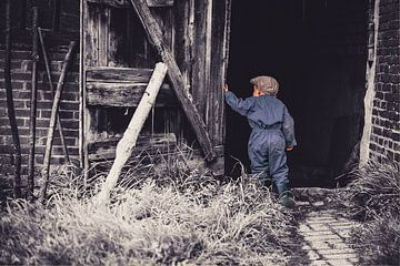 The little farmer van Marian Roest