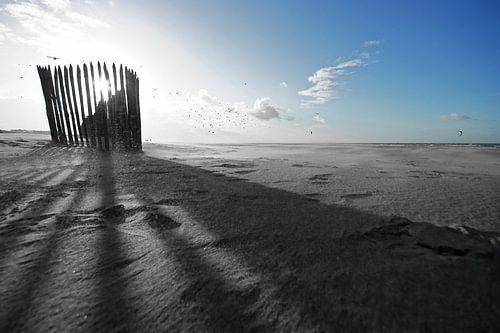 zon en strand van Dirk van Egmond