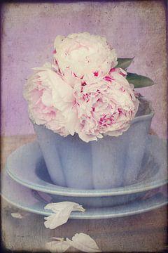 vintage witte rozen met een roze hartje sur Marga Goudsbloem