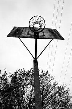 Basketbalring van Eline Willekens