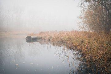 Ruhe und Frieden im Biesbosch von Petra Brouwer