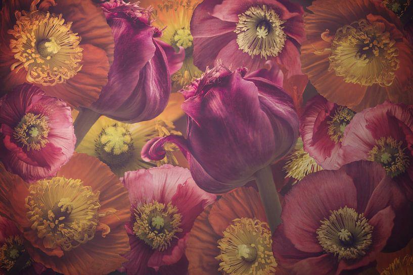 Tulips and Poppies van Marina de Wit