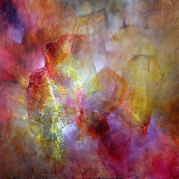 Het licht van Annette Schmucker