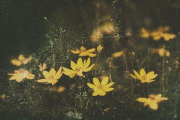 """""""Die gelben Blumen von Jacques Vledder"""
