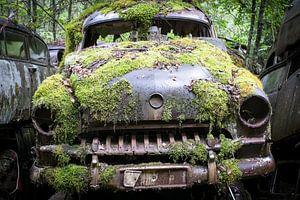 Nice oldtimer into the woods of Sweden