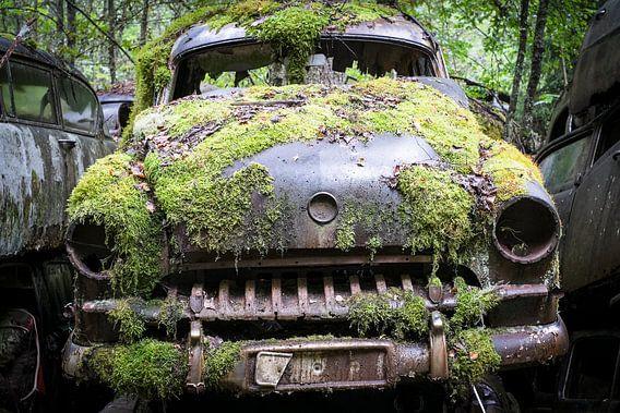 Oldtimer in den Wäldern Schwedens