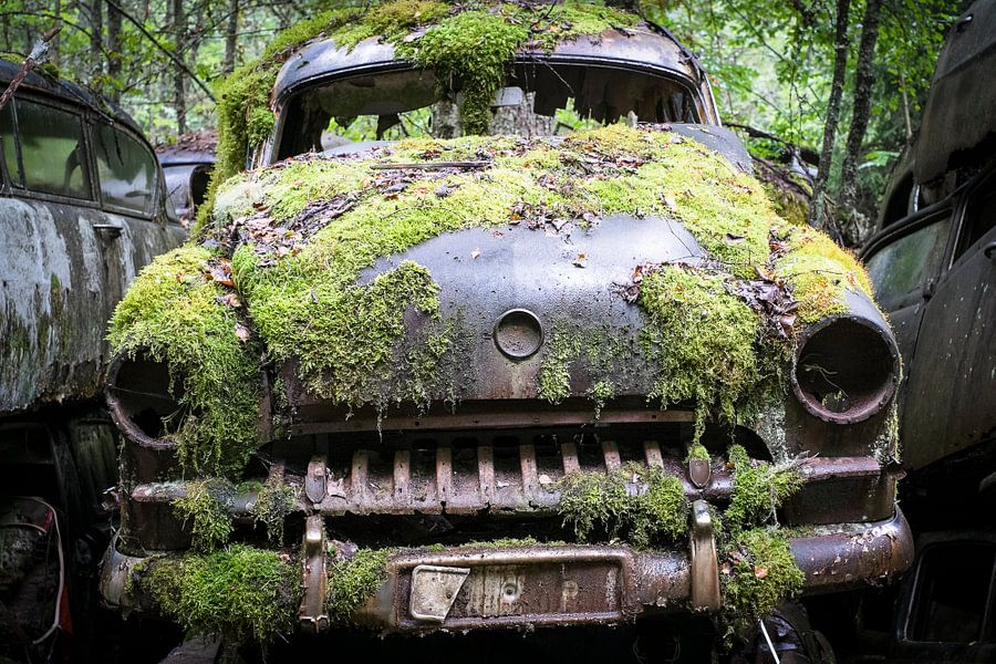 Nice oldtimer into the woods of Sweden van marcel schoolenberg