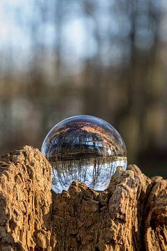 Door een glazen bal #1 van Robert Wiggers