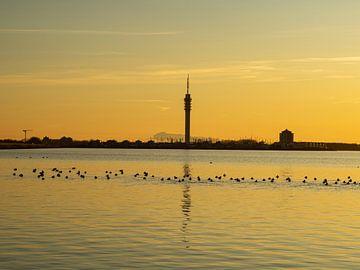Toren van Lelystad van Mariusz Jandy
