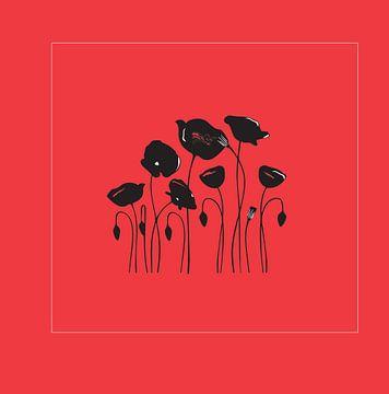 Klaproos Poppy op rood achtergrond van sarp demirel