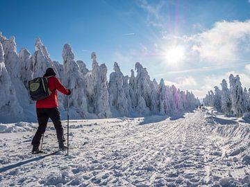 Schneesturm auf dem Fichtelberg im Erzgebirge von Animaflora PicsStock