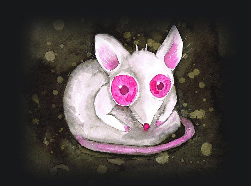 Rat albinos sur Bianca Wisseloo