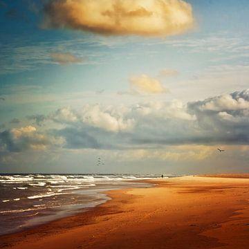 Atlantikstrand Contis-Plage / Aquitaine von Dirk Wüstenhagen