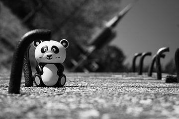 Panda op pad van Paul Bossenbroek