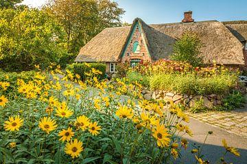 Friese woning met boerentuin in Keitum, Sylt van Christian Müringer