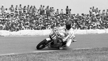Wil Hartog 1976 TT Assen sur Harry Hadders