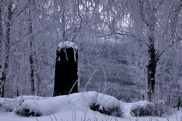 Tombstone von Christer Andersson