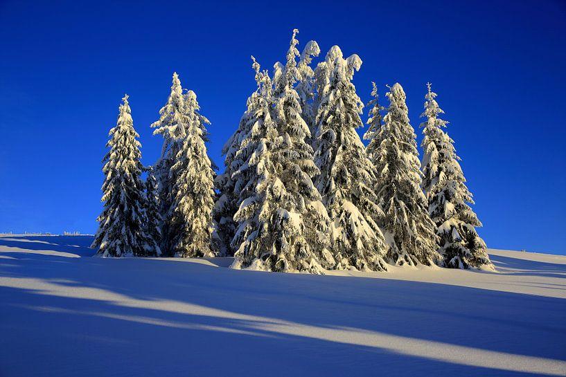 Wintertraum Feldberg von Patrick Lohmüller
