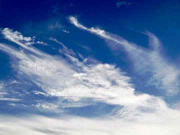 The Dutch Clouds 004 van