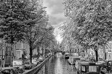 Amsterdam collectie voorbeeld