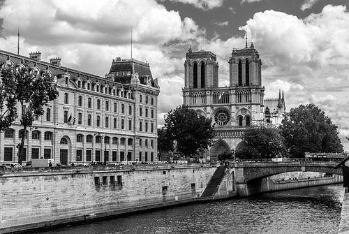Notre-Dame van Parijs van