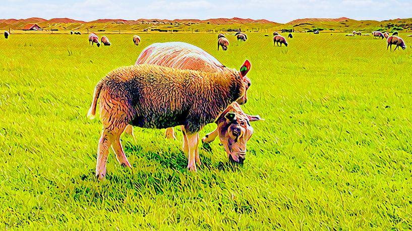 Zwei Texeler Schafe von Digital Art Nederland