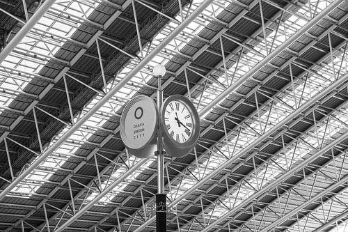 Osaka Station van