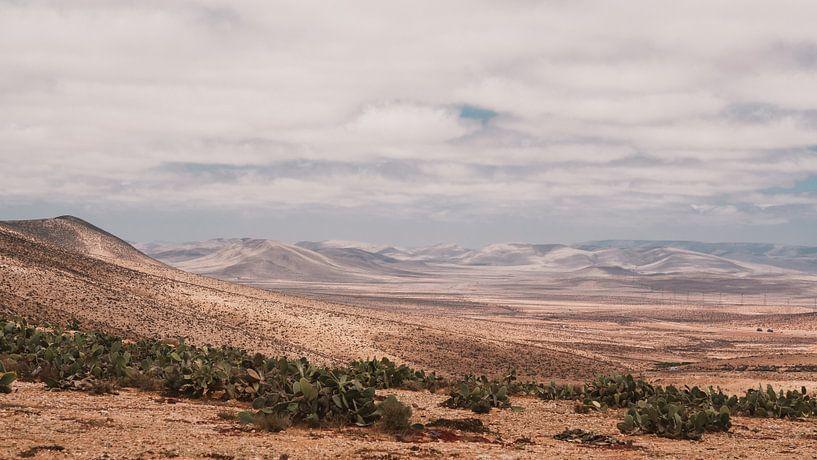 Marokkaans landschap von Andy Troy