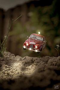 Springen von Pieter Heine