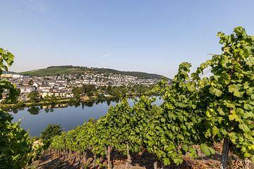 Uitzicht op het Moezeldal en de stad Bernkastel-Kues van Reiner Conrad