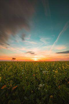 Zonsondergang Walcheren von Andy Troy