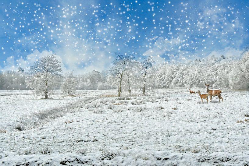 Winter landschap van Jeannette Penris