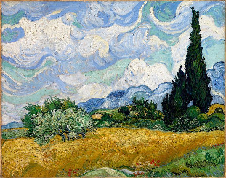 Vincent van Gogh. Veld met cipressen,  1889 van 1000 Schilderijen