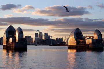 Seagulls over the Thames Barrier van Helga Novelli