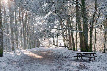 Soestduinen in de sneeuw van Wendy Bos