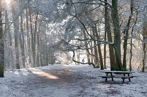 Soestduinen in de sneeuw van