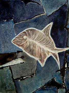 Fossilien - Kugelfisch I von Christine Nöhmeier