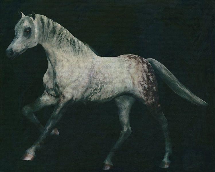 Arabisch paard in galop van Jan Keteleer