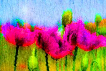 Abstract : Geschilderde klaprozen van Michael Nägele