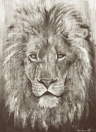 Lion Grey
