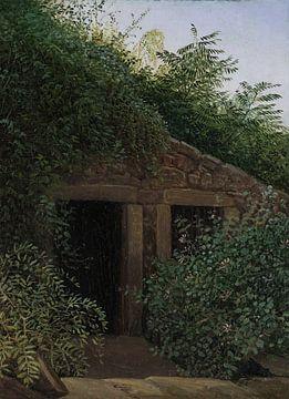 Carl Gustav Carus-A überwuchertes Minesheft