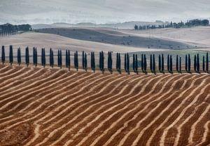 Toscane landschap van