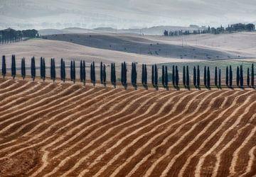 Toskanische Landschaft  von