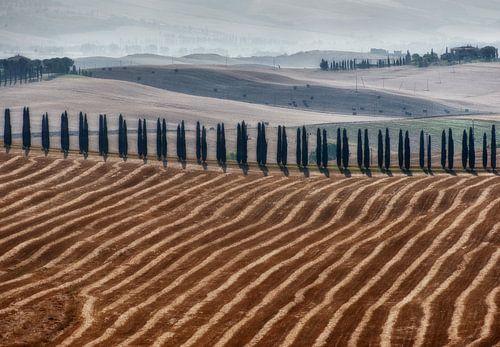 Toscane landschap