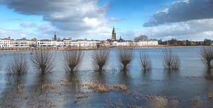 Buiten oevers getreden rivier de IJssel, bij Zutphen van Frans van der Gaag