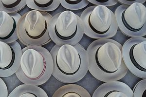 Panamahoeden in de aanbieding